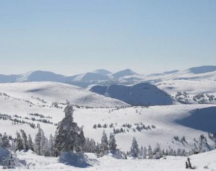 На Рахівшині рятувальники відшукали заблукалих у горах туристів