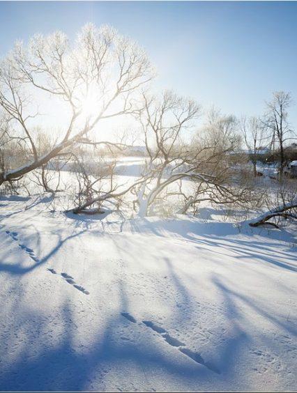 Чого очікувати закарпатцям від погоди у вівторок, 19 грудня