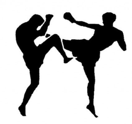 На Міжнародний турнір з кікбоксингу до Ужгорода приїдуть спортсмени з 4 країн