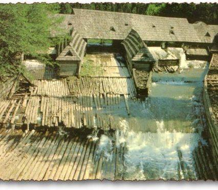На відновлення Музею лісу і сплаву Закарпаттю виділили 53 мільйони гривень