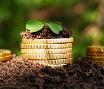 Минулоріч закарпатські платники земельного податку сплатили понад 281,8 млн гривень