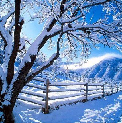 Чого очікувати закарпатцям від погоди у вівторок, 23 січня