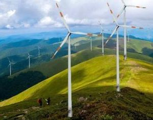 У Воловці протестували проти будівництва вітрової електростанції на Боржавській полонині (ВІДЕО)
