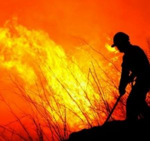 Поля у вогні. Кількаметрові стовпи полум'я і диму охоплюють Ужгород (ВІДЕО)
