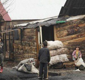 Київ хоче будувати житло ужгородським ромам – мерія має виділити землю (ВІДЕО)