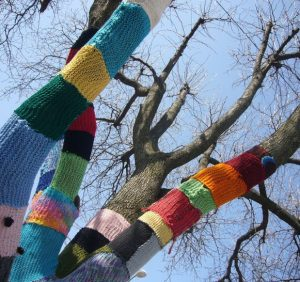 Дерева в шарфиках: українка створює природні арт-об'єкти (ВІДЕО)