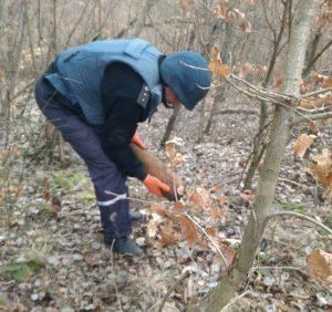 На Ужгородщині піротехніки ДСНС знищили черговий вибухонебезпечний предмет
