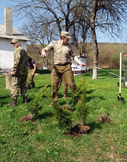 Прикордонники та лісівники озеленили відділ прикордонної служби