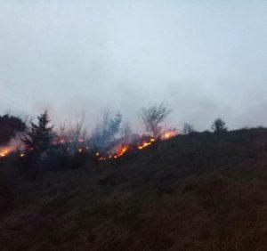 Суха трава продовжує горіти, а вогнеборці – боротися із такими пожежами