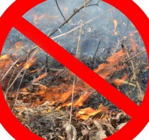 Лісівники Воловеччини закликають не спалювати траву