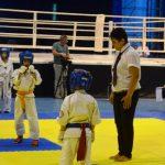 Відкритий чемпіонат світу з шидокан-карате в Ужгороді