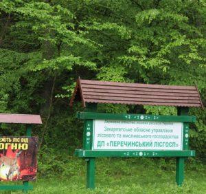 Ліси Перечинщини закриті для відвідувань