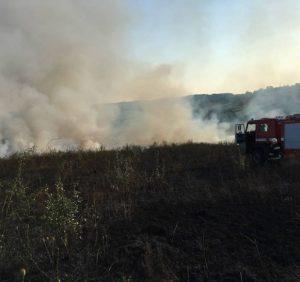 За вихідні на Закарпатті сталося 40 пожеж в екосистемах