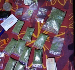 Факти незаконного вирощування наркотиків фіксують на Закарпатті (фото)