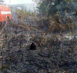 «Сезон» пожеж сухої рослинності продовжується. Рятувальники закликають не палити сухостій