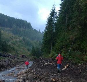 Закарпатку, котра заблукала у лісі під час збору грибів, відшукали івано-франківські рятувальники