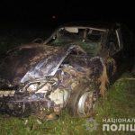 На Тячівщині «Opel Vectra» протаранив віз з кіньми. Є постраждалі