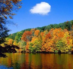 Чого очікувати закарпатцям від погоди у п'ятницю, 19 жовтня