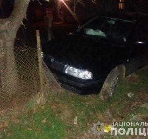 Алкогольна ДТП на Перечинщині: водій не зміг втекти від поліції