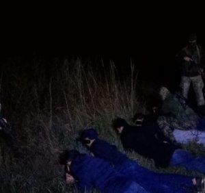 Групу нелегалів затримали прикордонники на Закарпатті