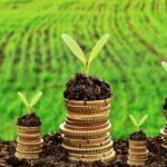 Продаєте власну сільськогосподарську продукцію – отримайте в сільраді довідку
