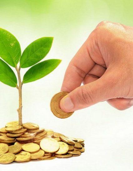 Новий порядок справляння та розподілу сум доходів від екологічного податку (в частині викидів двоокису вуглицю)