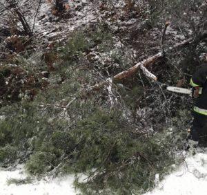Рятувальники Закарпаття ліквідовують наслідки снігопадів (фото)