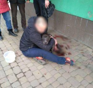 У центрі Ужгорода патрульні знайшли собаку з численними ножовими пораненнями (фото, відео)