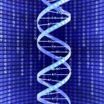 Возможности анализа ДНК в 21-ом веке