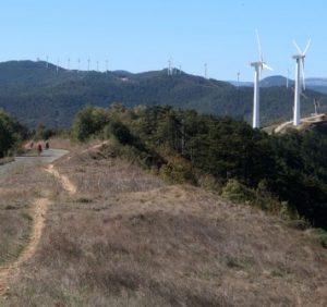 Департамент екології ОДА не давав добро на будівництво вітряків на Боржавській полонині