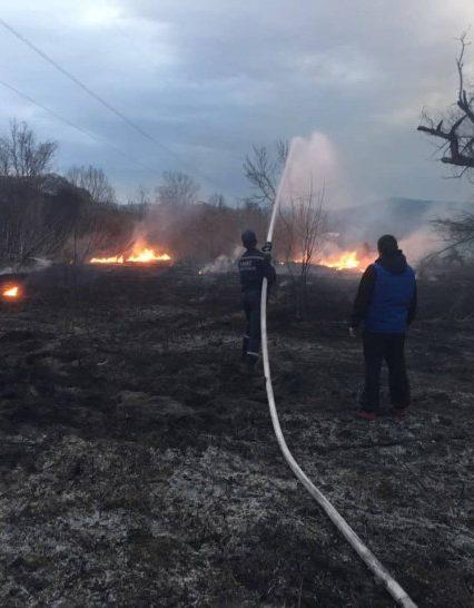 Закарпатські екосистеми у вогні. Рятувальники застерігають не провокувати пожежі!