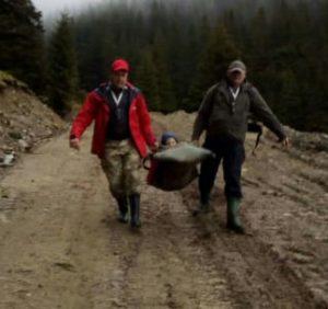 Закарпатські рятувальники надали допомогу травмованій у горах дитині