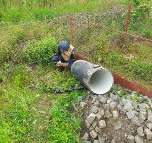 Закарпатські піротехніки знищили застарілий боєприпас