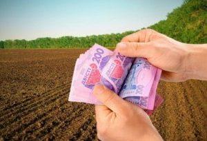 Берегівська місцева прокуратура повернула в державну власність землі вартістю близько 2 млн грн