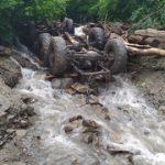 Трагедія на Закарпатті: в результаті селевого потоку загинули жителі Тарасівки