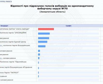 Свалявська ОВК опрацювала 100% протоколів: перемагає партія «Слуга Народу» та її кандидат Михайло Лаба