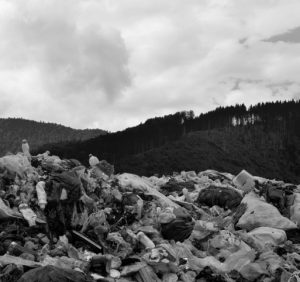 Екологічне пекло Міжгірщини: «Слуга Народу» вже працює над вирішенням (ФОТО, ВІДЕО)