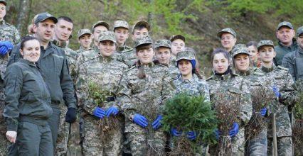 Шкільні лісництва Закарпаття: як вступити в ряди юних лісівників