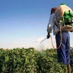 Пестициды: история их применения