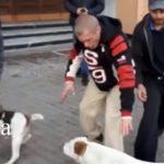 Порушення правил вигулу собак ледь не призвело до бійки (відео)