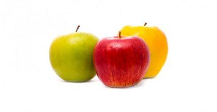 Разновидности яблок и их полезные свойства