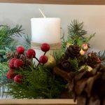 Лісівники Ужгородщини почали реалізовувати новорічні композиції