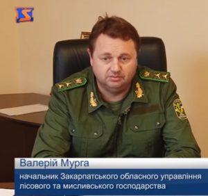 Прем'єр-міністр відсторонив керівника Закарпатського облуправління лісового господарства Мургу