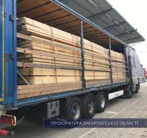 На Закарпатті викрито схему контрабандного вивезення деревини за кордон