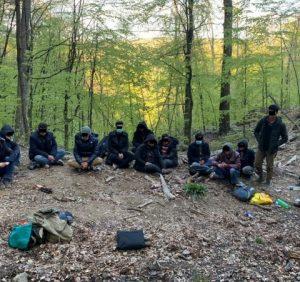 Прикордонники Чопського загону затримали у лісі 12 афганських нелегалів