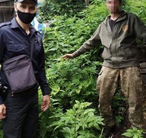 """На Воловеччині поліцейські """"накрили"""" наркогород"""