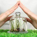 Фунгицидные препараты для растений