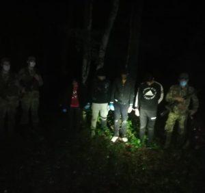 У лісі під Ужгородом біля кордону зі Словаччиною зупинили чергову групу нелегалів