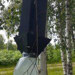 На Хустщині у лісах виявляють вогнища шкідливих організмів та встановлюють феромонні пастки