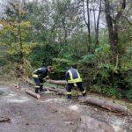 Рятувальники приборкують наслідки негоди на Закарпатті